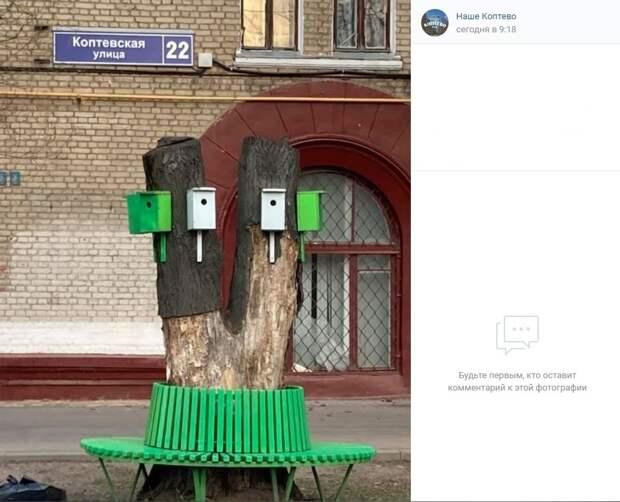 Фото дня: птичье общежитие на Коптевской