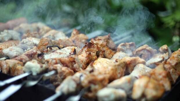Россиянам напомнили о правилах безопасного поедания шашлыка