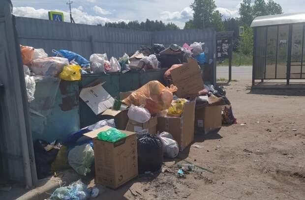 Рязанец пожаловался на переполненную помойку в Солотче