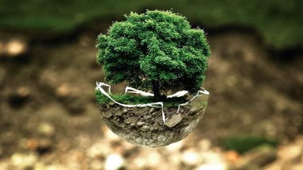 День эколога отметят «ЭкоКвестом» в парке Яуза