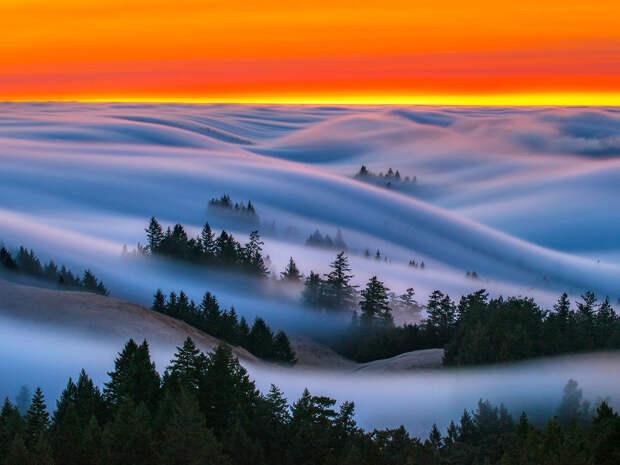 Нереально красивые фотографии волн… тумана