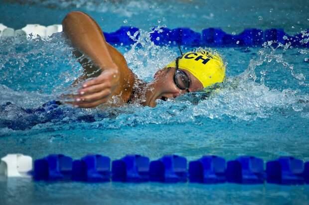 Открытые соревнования по плаванию пройдут в САО
