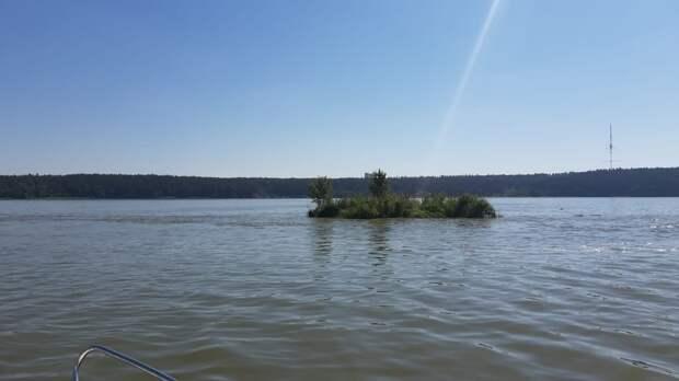 Добровольцы ликвидировали плавучий остров в акватории Ижевского пруда