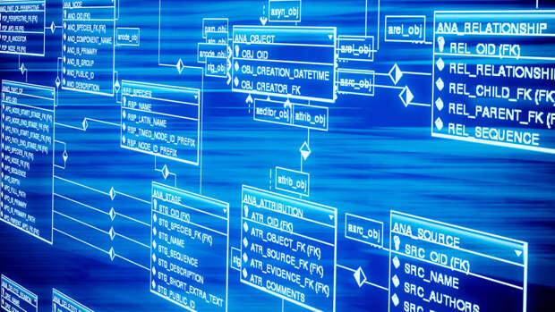 """В России создадут """"капсулу времени"""" для передачи цифровых данных потомкам"""