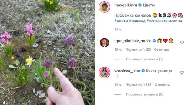Дочь Галкина и Пугачевой поразила поклонников знанием растений