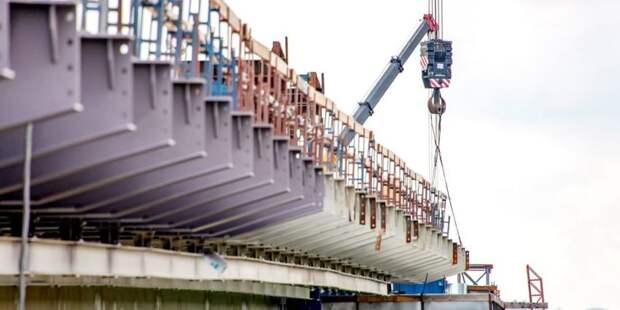 Архитекторы получат гранты на проекты мостов через Москву-реку – Собянин Фото: Д. Гришкин mos.ru