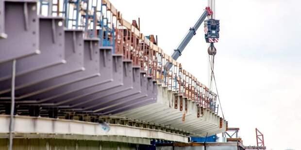 Собянин: Архитекторы получат гранты на проекты мостов через Москву-реку. Фото: Д. Гришкин mos.ru