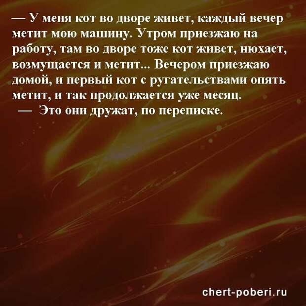 Самые смешные анекдоты ежедневная подборка chert-poberi-anekdoty-chert-poberi-anekdoty-03451211092020-9 картинка chert-poberi-anekdoty-03451211092020-9