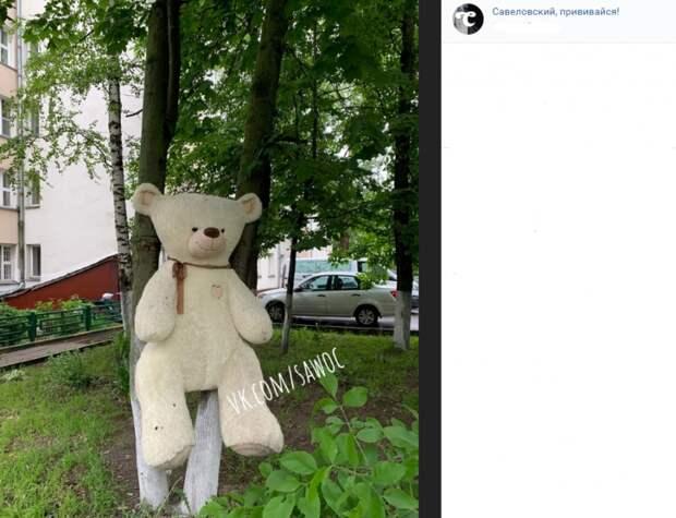 Фото дня: плюшевый житель двора в Савеловском