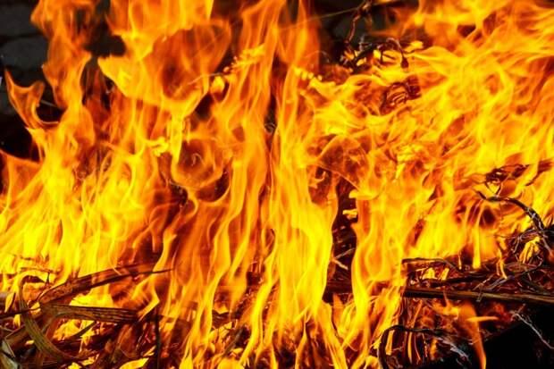 Лес загорелся в Сочи из-за запуска фейерверка
