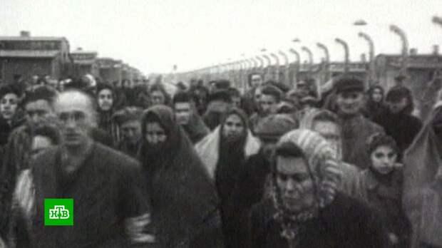 Учителя в США шокированы требованием преподавать «альтернативный взгляд на холокост»
