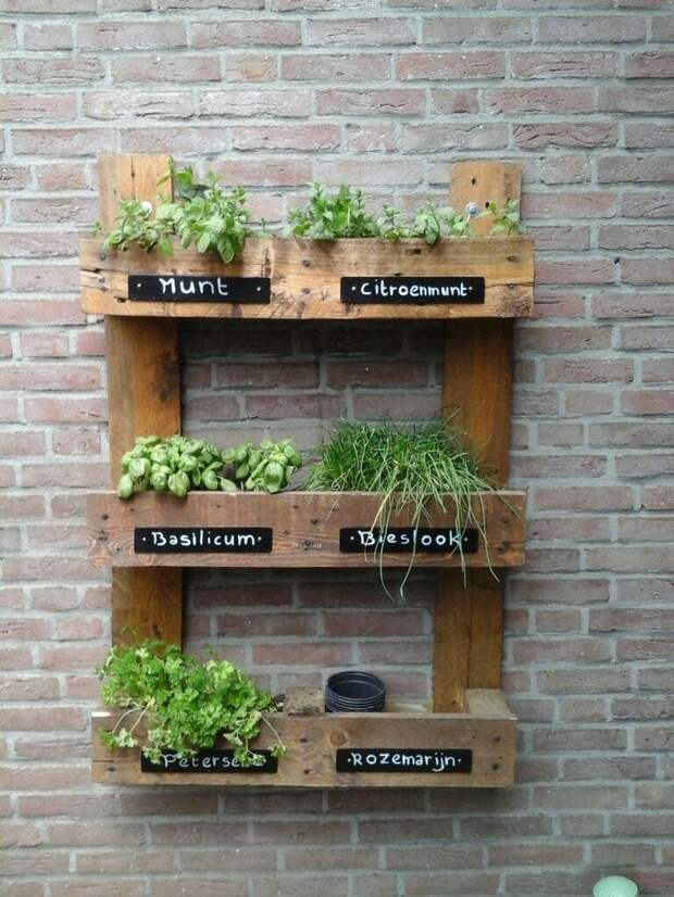 Освобождаем подоконник: настенные полки для вертикального сада