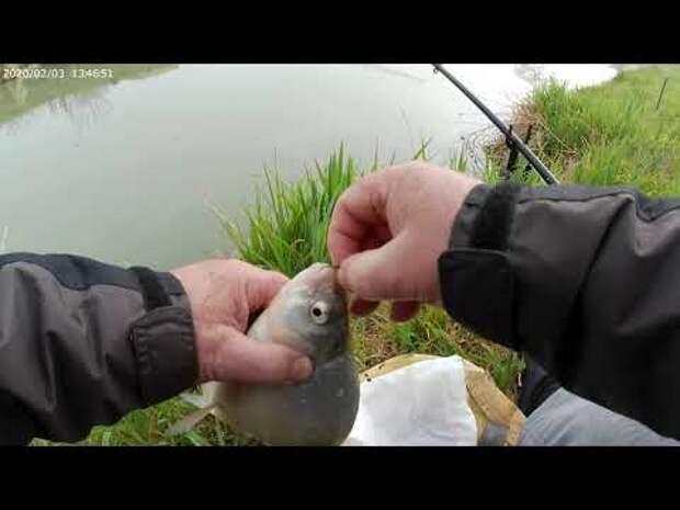 Лещ не лещ а подлещик тоже рыба приносящая удовольствие от процесса.