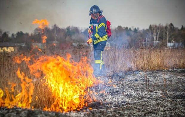 Военные защитили два населенных пункта от природных пожаров в Сибири