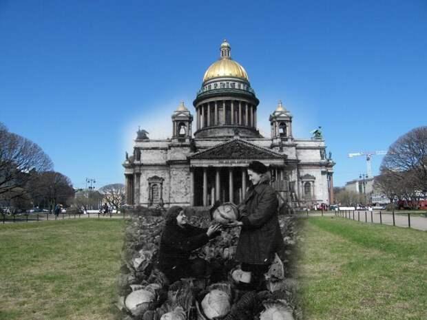 Ленинград 1942-2009 Исаакиевская площадь.Урожай капусты блокада, ленинград, победа