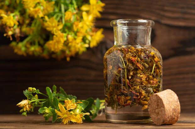 Одно и то же растение можно использовать для приготовления различных фитопрепаратов