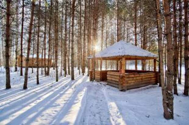 Смешные истории : Зимний Легерь