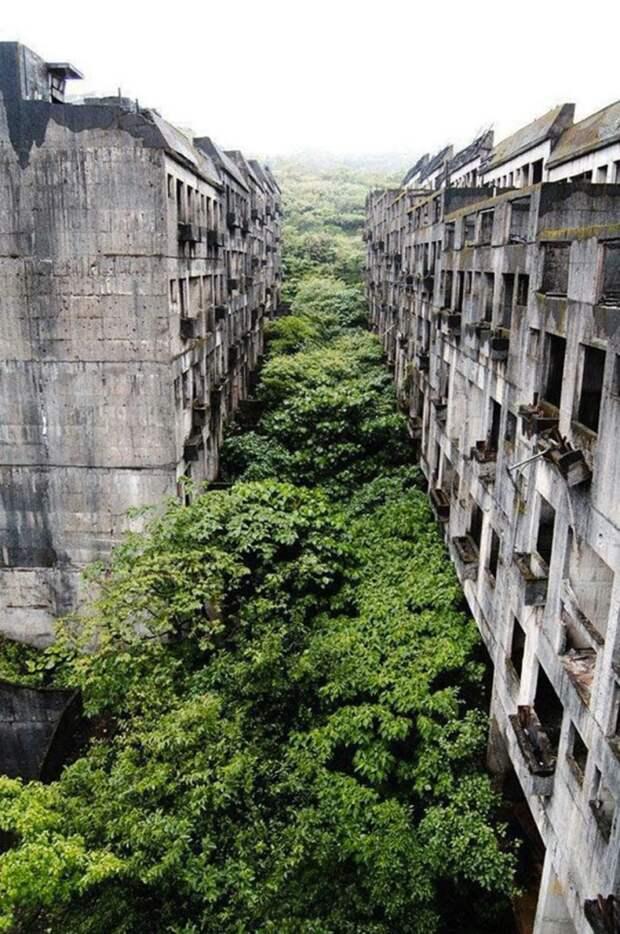 Великолепные снимки нашей планеты, показывающих, как природа побеждает цивилизацию