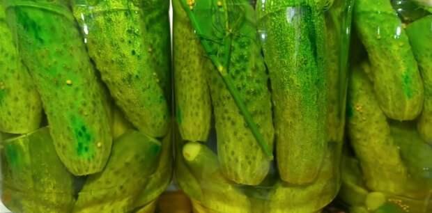 Огурцы «Глобус» родом из СССР. Рецепт вкусных и хрустящих огурчиков