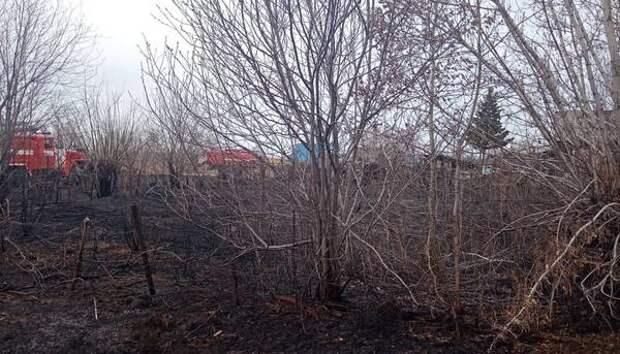 В Новосибирской области зафиксирован 31 лесной пожар