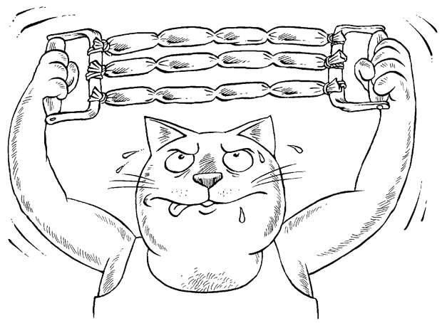 «ТЕБЯ НАШЛИ НЕ В КАПУСТЕ, А В ПОДЪЕЗДЕ…» - Беседы с котом