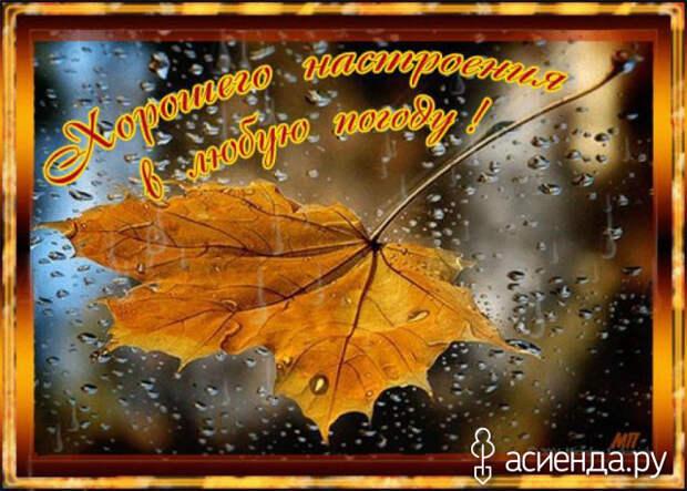 Народный календарь. Дневник погоды 19 сентября 2021 года
