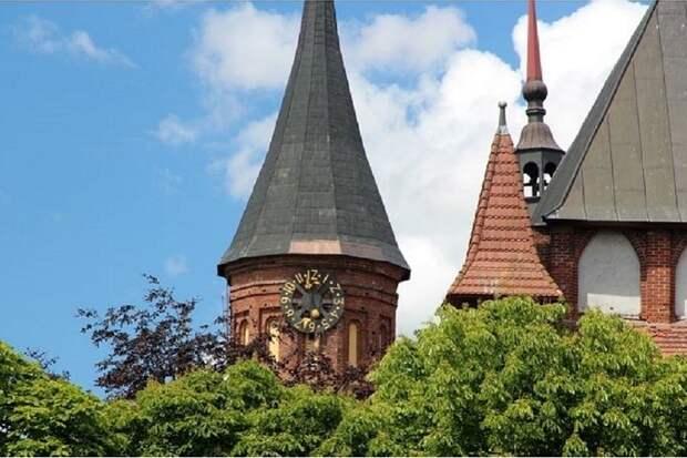 Посетивший Калининград немец захотел остаться жить в России