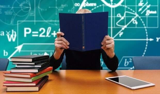 Из-за драки учеников вшколе вКагальницкой вРостовской области начали проверку