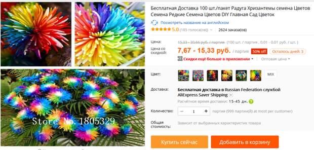 Разноцветная хризантема алиэкспресс, обман, семена, фотошоп