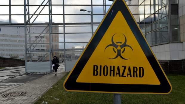 Российские ученые нашли способ быстрее отслеживать штаммы коронавируса