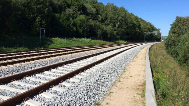 Руководство Литвы проявляет чрезмерный оптимизм по поводу будущего Rail Baltica