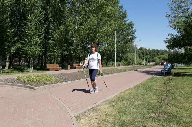 Сквер по Олонецкому вошёл в список лучших парков для вечерних прогулок