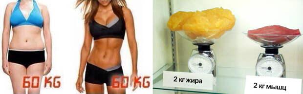 Весы - враг худеющего!