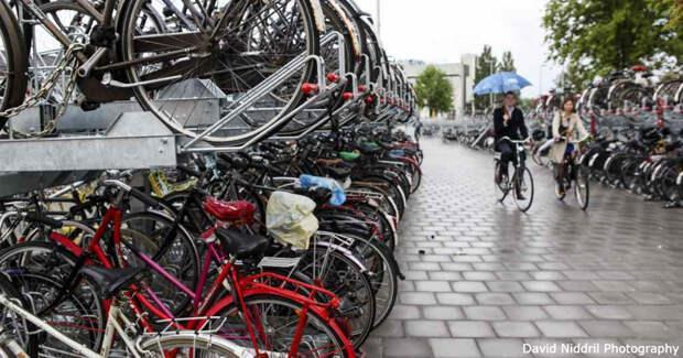 В Нидерландах будут платить тем, кто продаст машину и купит велосипед