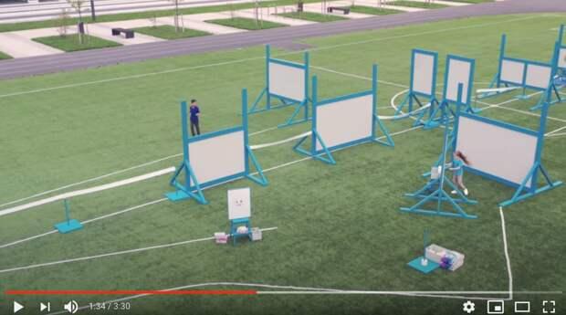 кадры из рекламы Zewa Russia/Youtube