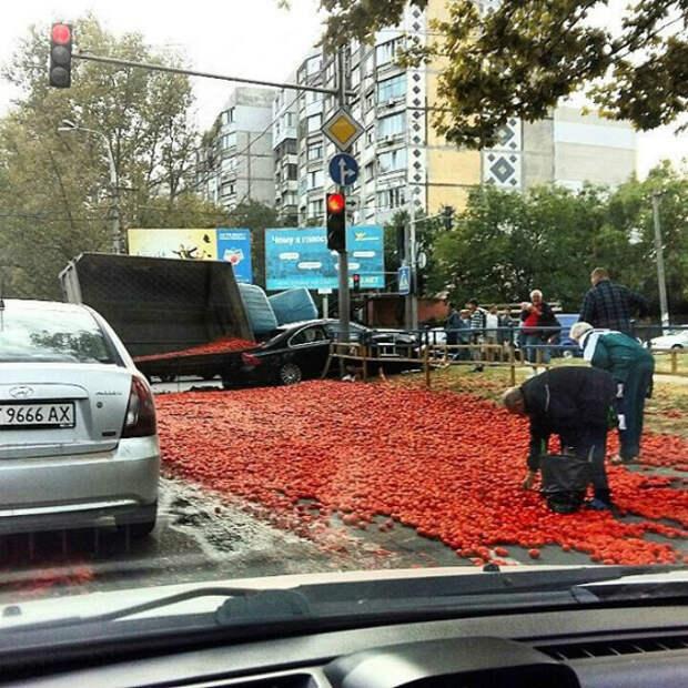 Ковер из томатов.