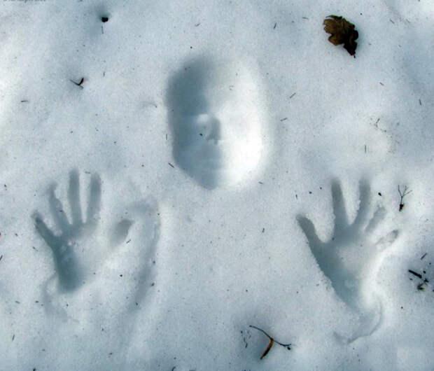 Странный след на снегу. | Фото: Записки мужика.