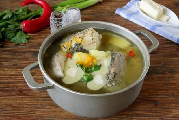 Рыбные бульоны и супы хорошо сочетаются с лавровым листом, репчатым луком, петрушкой, душистым перцем / Фото: fan-female.ru