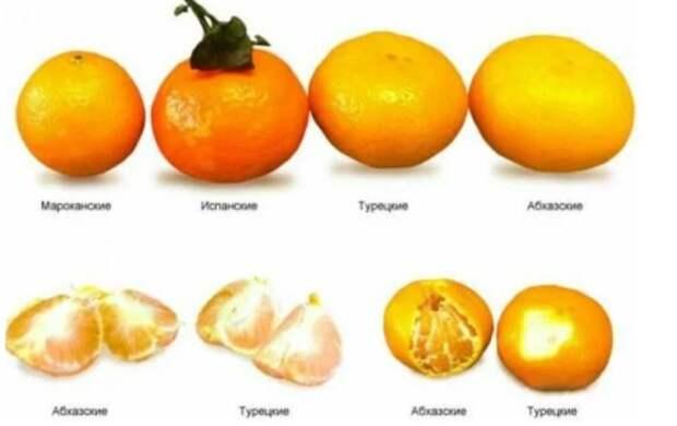 Вкусные мандарины можно выбрать, не пробуя. Главное знать 2 важных признака
