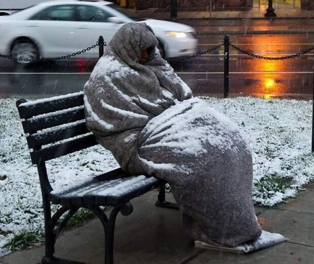 Аномальная зима: 20 фото о том, насколько безумно холодно в США сейчас