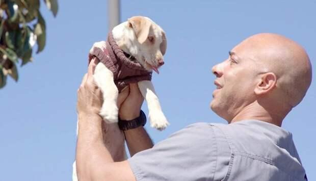 Врач спасает всех, но не берёт ни копейки. Он лечит животных, принадлежащих бездомным людям…