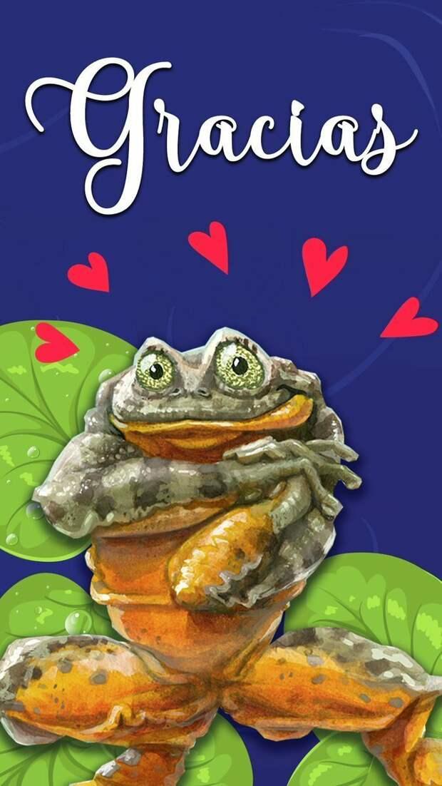 Ромео, «самая одинокая лягушка в мире», всё же нашел свою Джульетту Любовь, в мире, животные, забавно, лягушка, умора