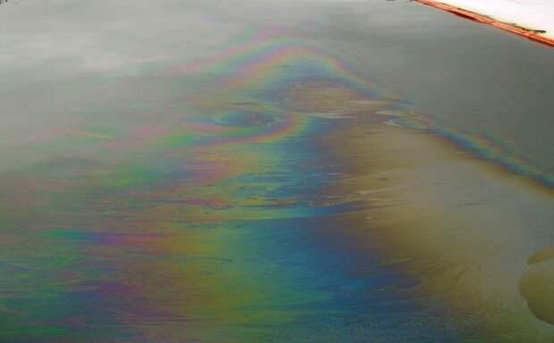 Севастопольскую бухту залили нефтепродуктами
