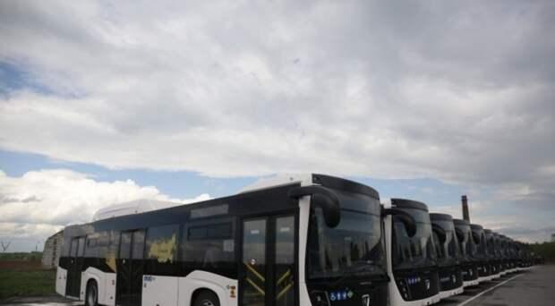 Новосибирский автопарк получил 14 низкопольных автобусов российского производства