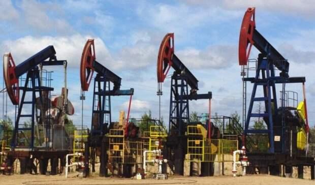 Минприроды: лишь на59 лет хватит запасов нефти России