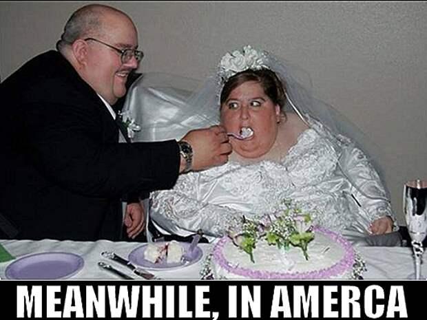 fat_cake