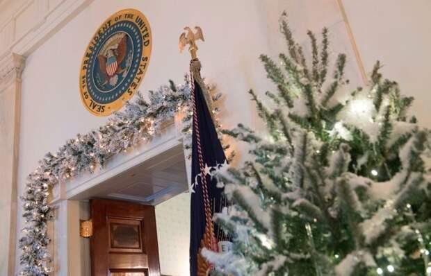 Рождественские елки белый дом, забавно, запреты, познавательно, правила, президенты сша, странные законы, сша