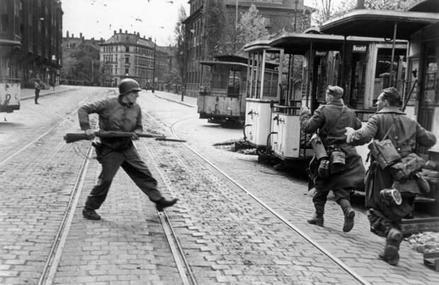 Горе побеждённым: почему американцы жестоко унижали немцев в 1945 году