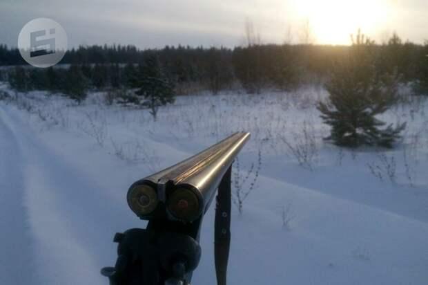 Сезон охоты на лосей и пушных животных откроется в Удмуртии 1 ноября
