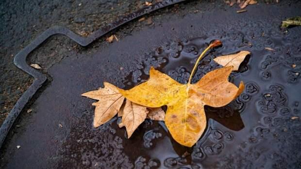 Дожди и холодно: прогноз погоды в Крыму на вторник